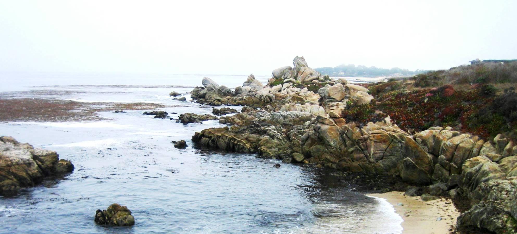 Monastery Beach